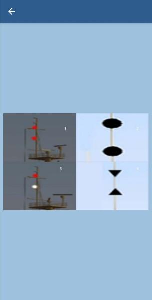 35. Какие знаки должны выставлять судно, лишенное возможностью управлять?