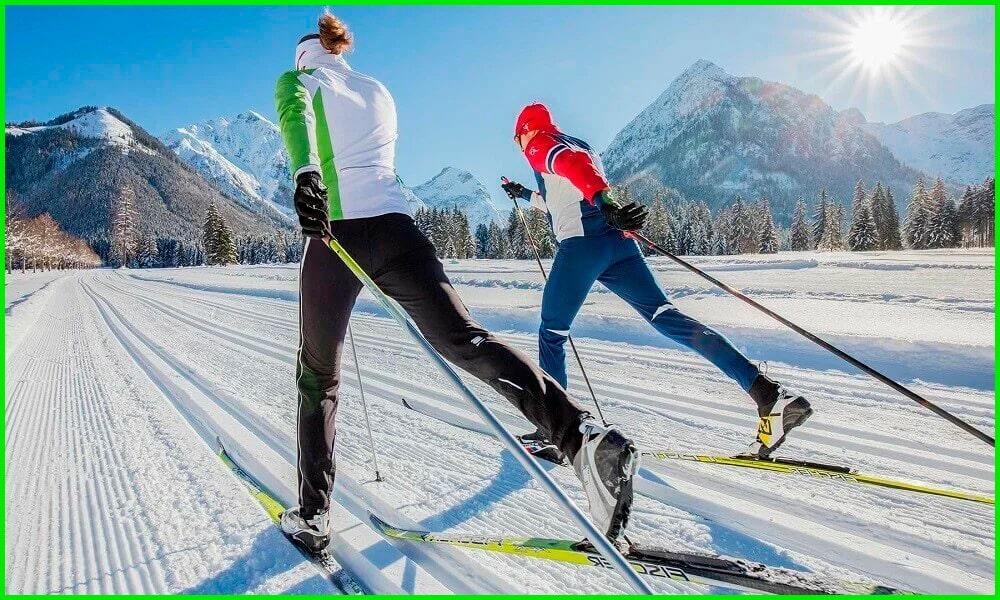 Какой вид передвижения лыжного хода изображен на картинке?