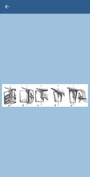 258. Укажите название типов рулей, показанных на рисунках