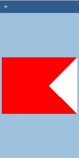 49. В каких случаях судно обязано поднимать этот флаг?