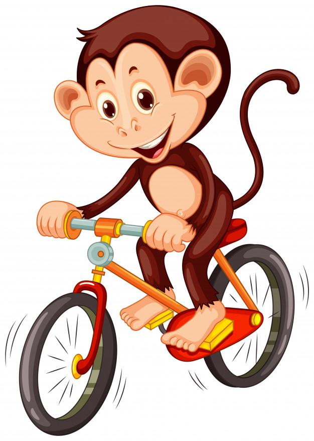 С какого возраста разрешается управлять велосипедом при движении по дорогам?