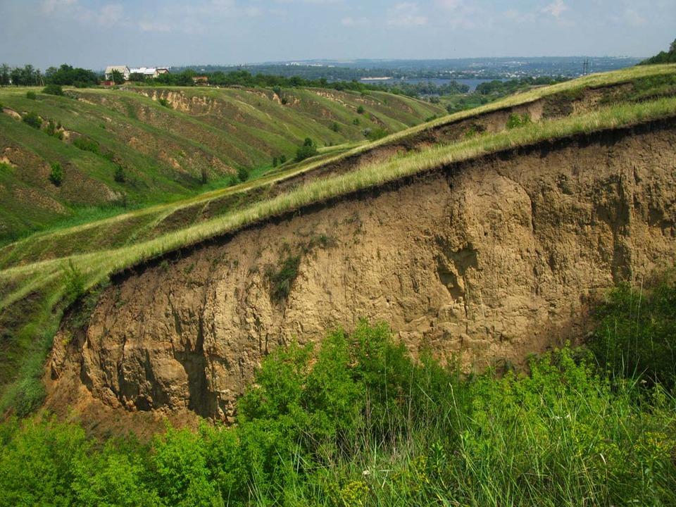 Как называется большая промоина в земле, образующаяся в результате сильных ливней?