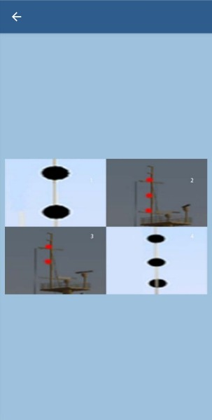 36. Какие сигналы должно выставлять судно на мели?