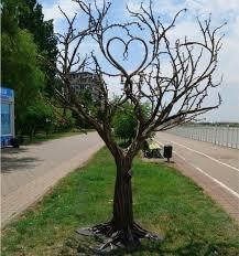 Шуточный вопрос. Какая ветка не растет на дереве?