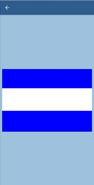 46. В каких случаях судно поднимает этот флаг?