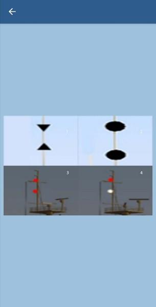 38. Какие сигналы должно выставлять судно, занятое ловом рыбы?
