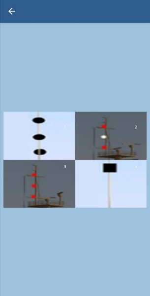 37. Какие сигналы может выставлять судно, стесненное своей осадкой?