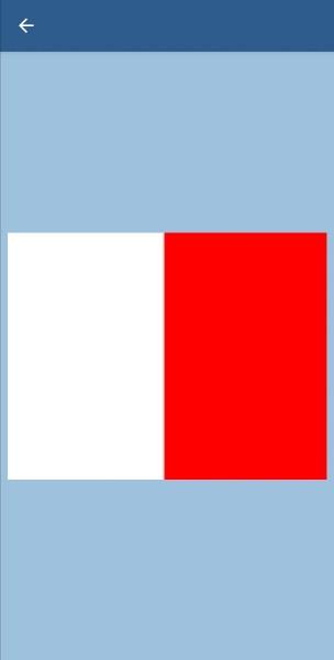 47. Что значит этот флаг?