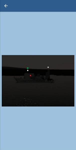 73. Какое судно выставляет такие огни?