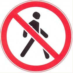 Разрешается ли пешеходу двигаться в зоне этого знака?