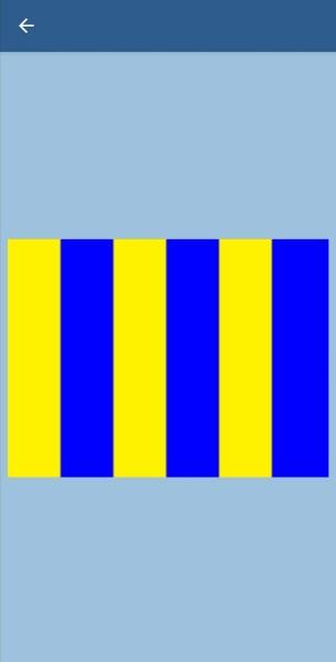 48. Что значит этот флаг?